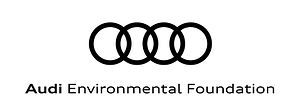Branding_Audi Environment_BLACK_transpar