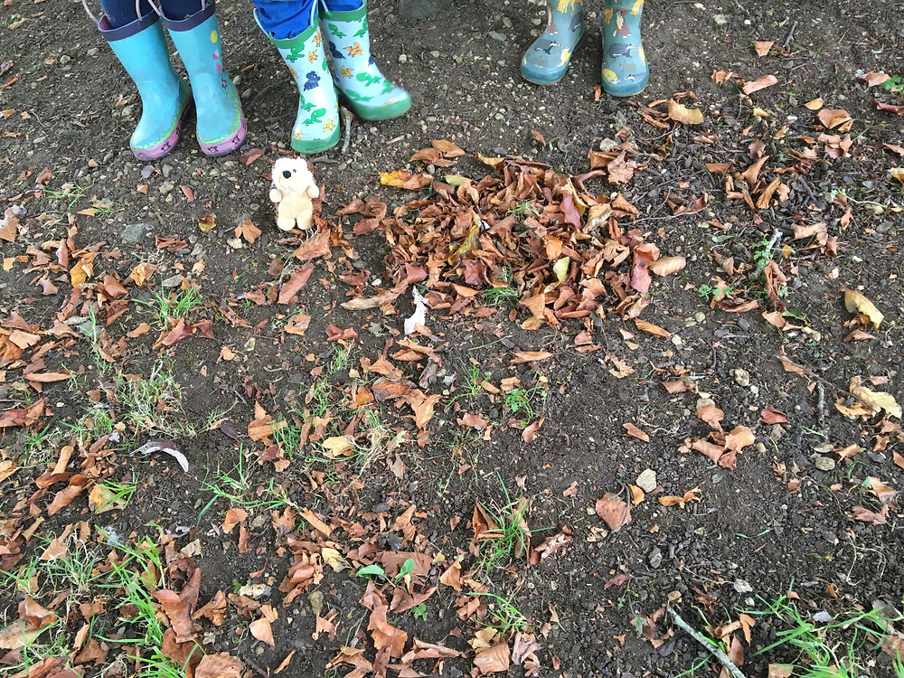 Forest School Fun - Spike the hedgehog with a leaf hedgehog made by the children