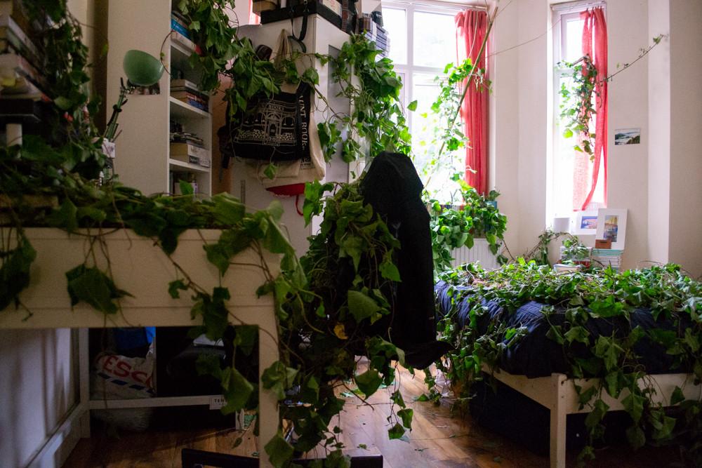 Broeikas (Green Room)