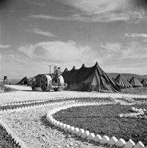 Palestine Refugges - Janzue Camp