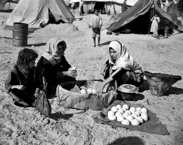 United Nations Relief for Palestine Refugees (UNRPR)
