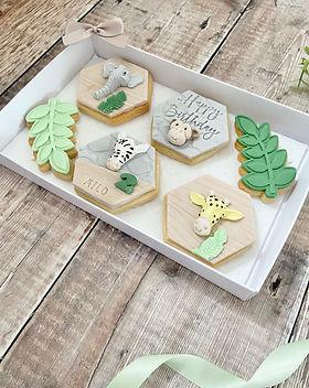 Safari Biscuit Set - 2.jpg