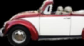 70sCarrentalPlayadelCarmen-BeetleTourExcursion-BeetleCarrental