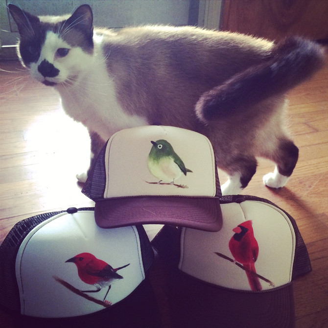 Put a Cat & Some Birds On It