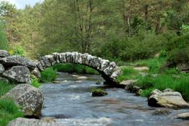 Le pont de senoueix