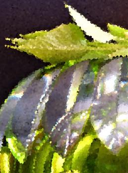Baccarat vert et lilas