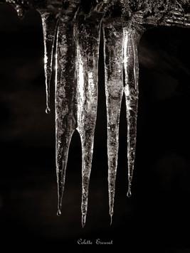 Doigts de glace