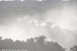 Brouillard gris