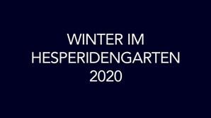 Winter Hesperidengarten 2020.jpg