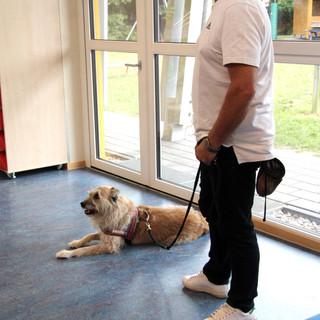 Training Klaus und Stella