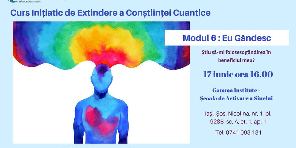 Eu gandesc - curs initiatic de extindere a constiintei cuantice