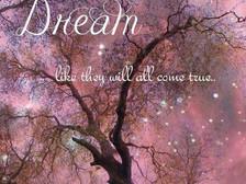 Ce fel de vis intenționezi să trăiești?