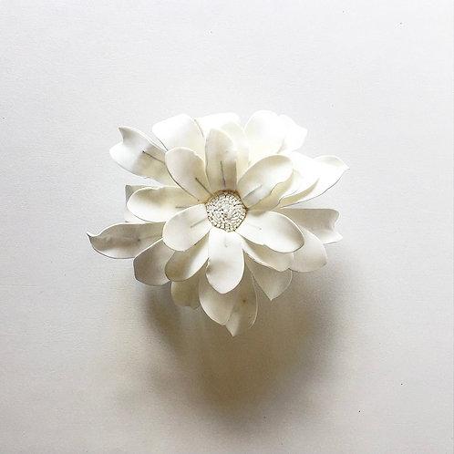 Medium White Daisy with Gray Box