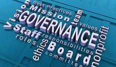 Organization governance terminology