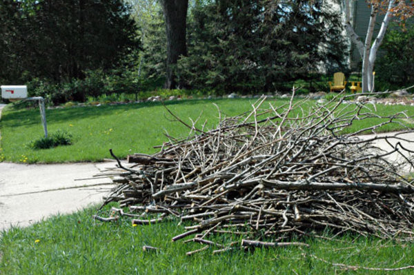 Brush Pile for Pickup