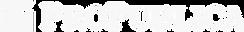ProPublica-ONA20-Logo-9-16-20-_edited.png