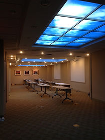 Conference Room with SkyCeilings