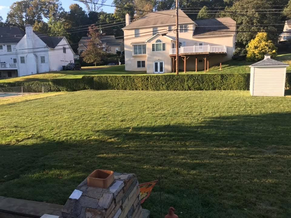 After Removal in Lower Moreland, PA | Robinson Landscape