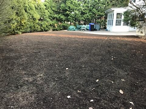 After Removal in Cheltenham, PA | Robinson Landscape