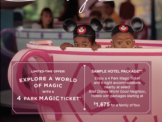 4 Park Magic Ticket