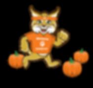 Bedminster PTG Bobcats Pumpkin Run.png