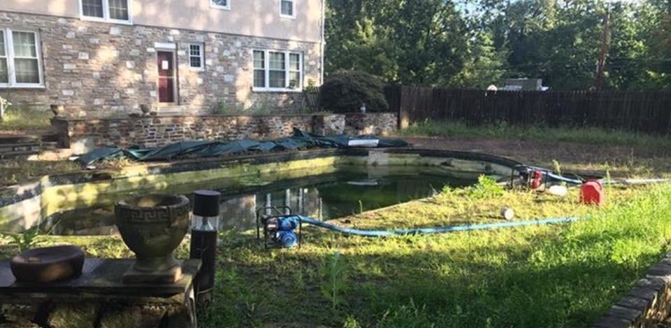 Before Removal in Abington, PA | Robinson Landscape