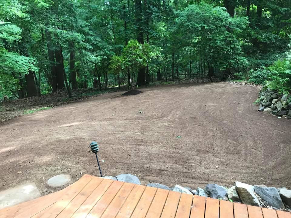 After Removal in Buckingham, PA | Robinson Landscape