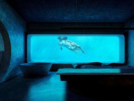 DESIGN - Combining dreams with reason: Villa Aquatica