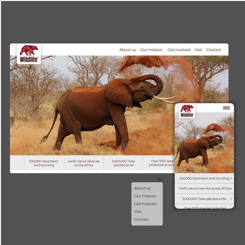 Wildlife-06.jpg