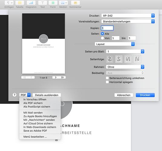 Screenshot_PDF_pages_kreativ_bewerbung.c