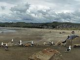 At-the-beach-during-Covid-1.jpg