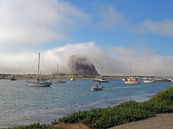 Morro-Rock-enveloped-in-fog