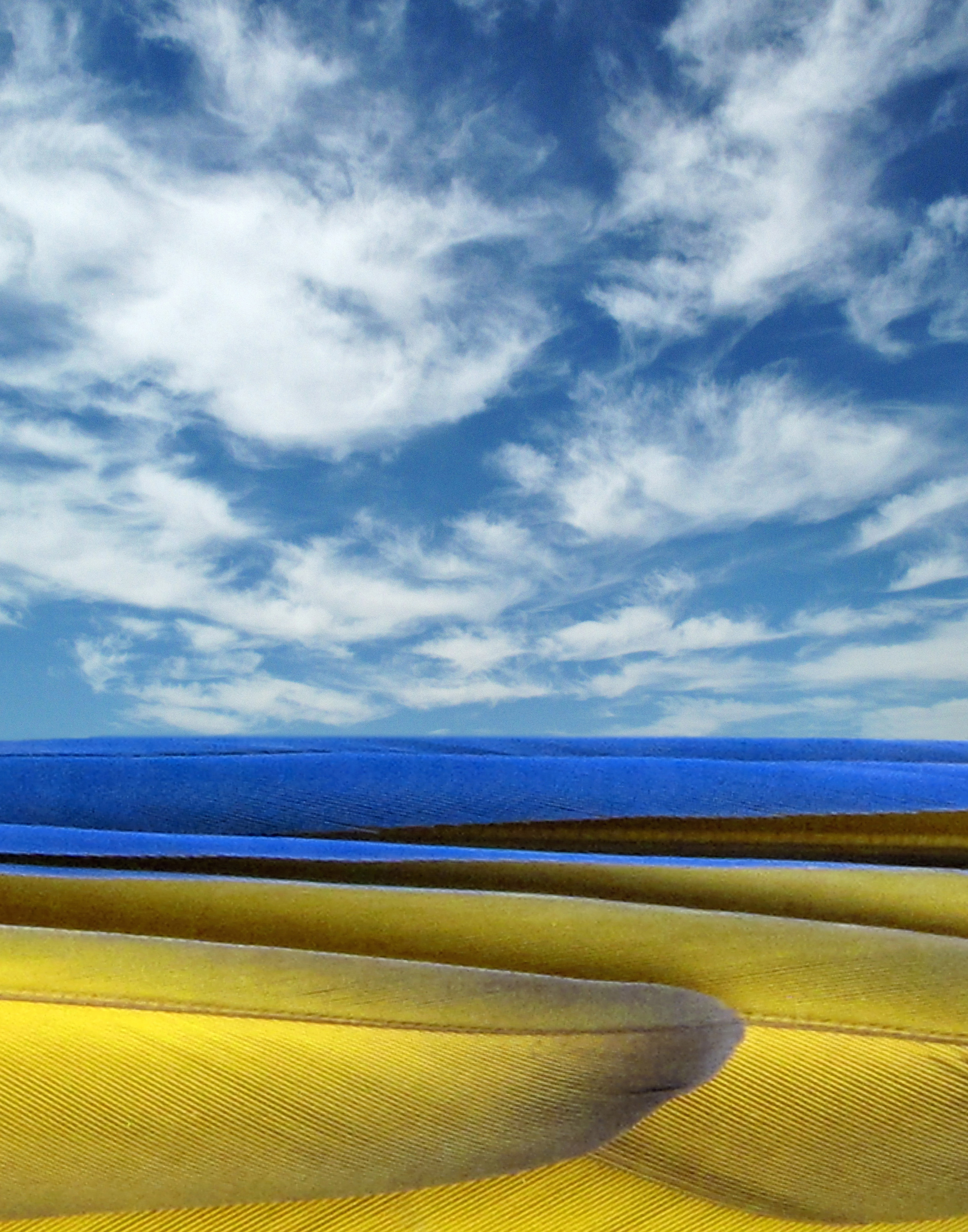 Sand,Sea & Sky