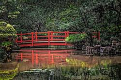Koa Pond