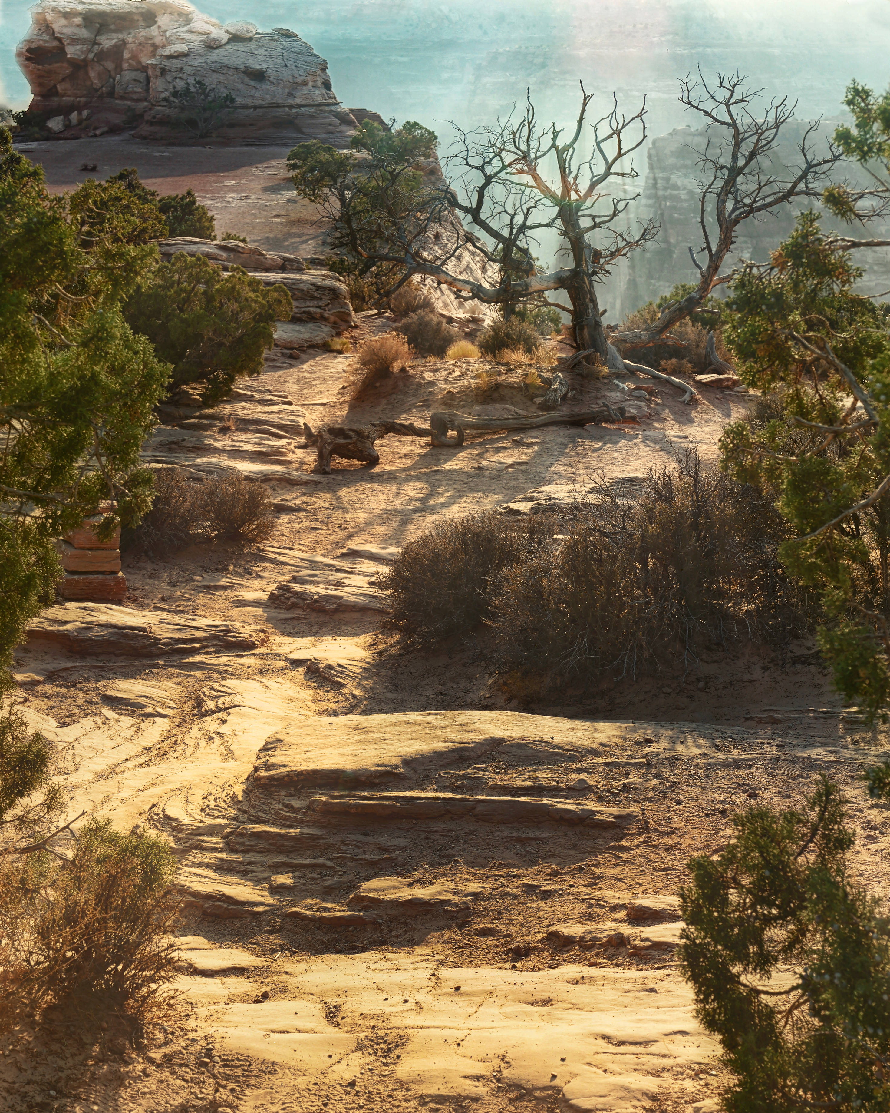 Sun Trail