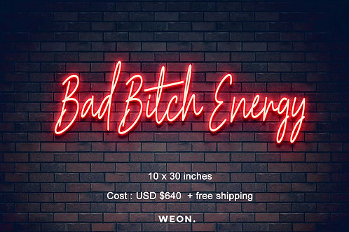 Custom Neon Sign ( Raissa Silva -First 50% Payment )