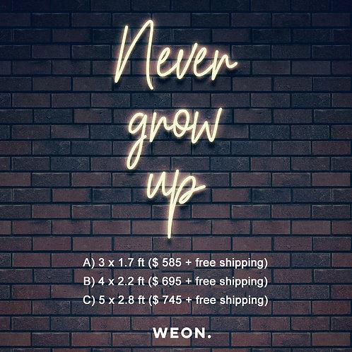 Custom Neon Sign ( Never grow up)