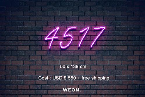 Custom Neon Sign ( Alex Stone  )