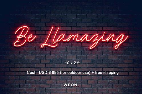 Custom Neon Sign (  Nikolle Larrea )