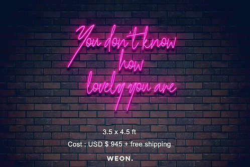 Custom Neon Sign ( Lauren Dwyer )