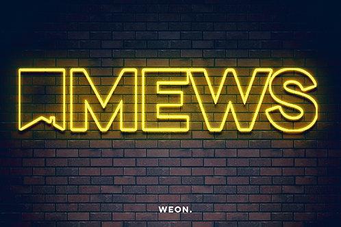 Custom Neon Sign ( Adam Britton )