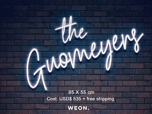 Custom Neon Sign ( the Guomeyers )