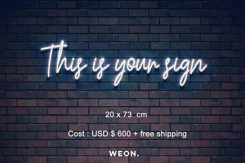 Custom Neon Sign ( Bryana Guy )