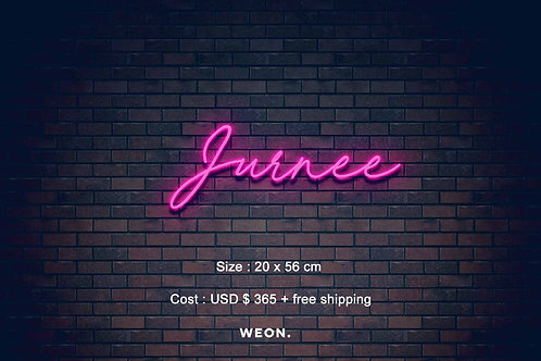 Custom Neon Sign ( The Jurnee Madison Show )
