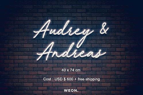 Custom Neon Sign ( Audrey Kerpan )