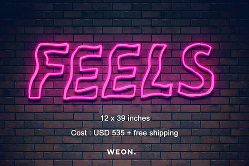 Custom Neon Sign ( HNin Nie )