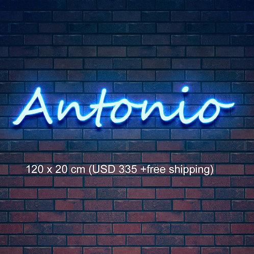Custom Neon Sign ( Alexandra Chapa )