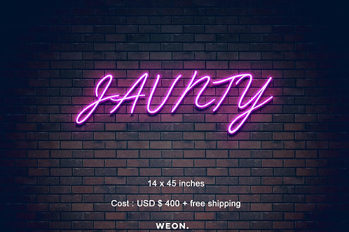 Custom Neon Sign ( Anthony Luke )