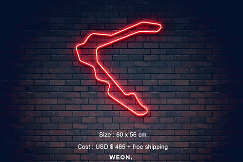 Custom Neon Sign ( Aleksandra Baranik )