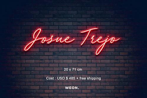 Custom Neon Sign ( Josh Trejo )